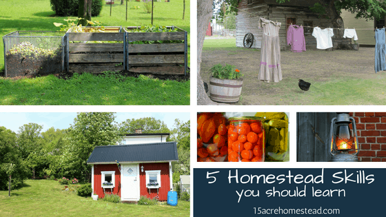 5 Homestead Skills You Should Learn