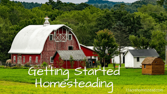 getting started homesteading