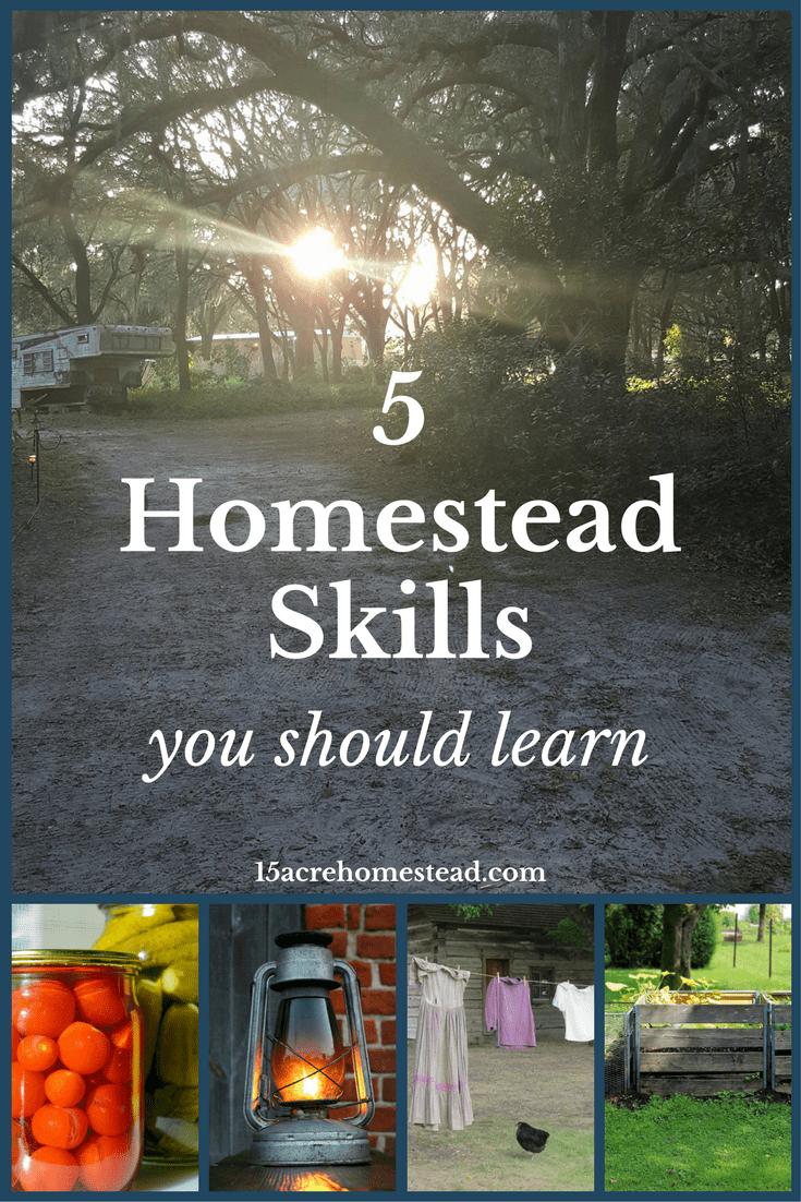 5 homestead skills you should learn.