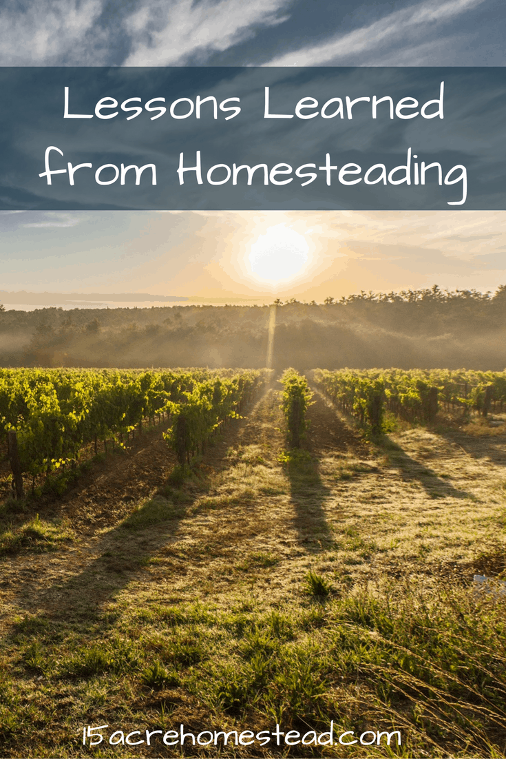 The most important things I've learned about homesteading.