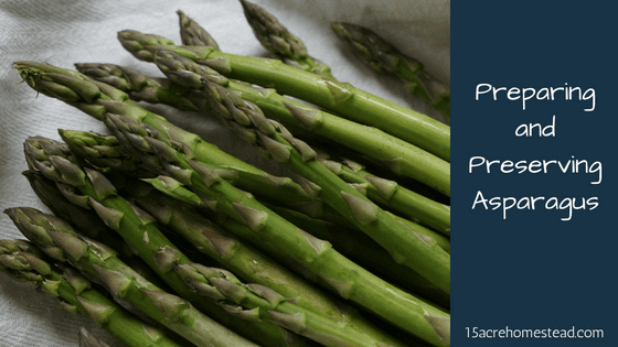 Preserving asparagus is easy with this step by step method for three ways to preserve your harvest!