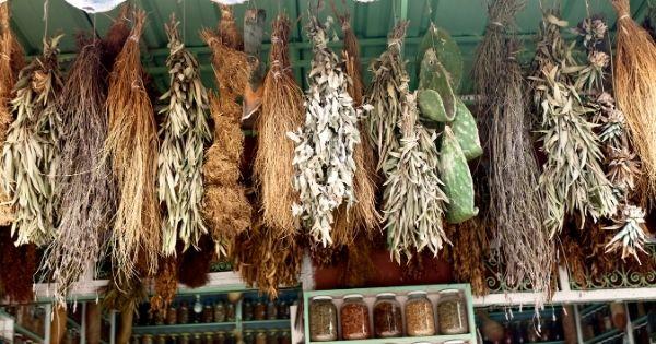 Herbs on a rack