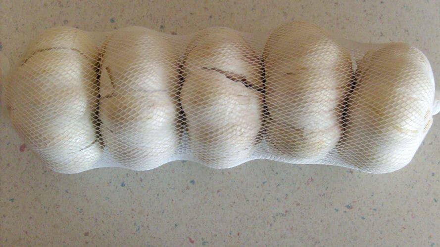 stored garlic in mesh