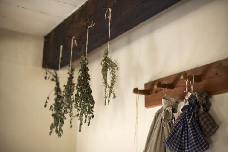 preserving herbs by hanging
