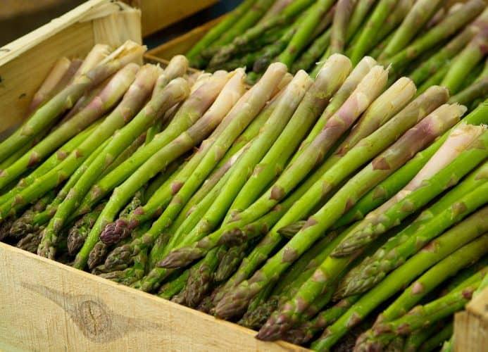 asparagus harvested