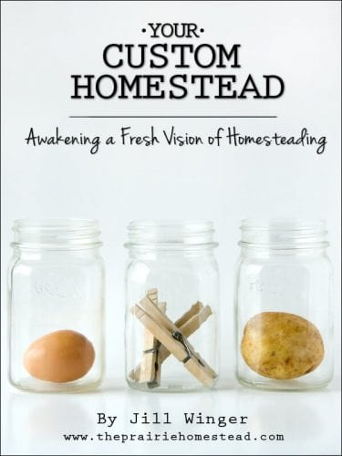 homesteading blogs theprairiehomstead.com