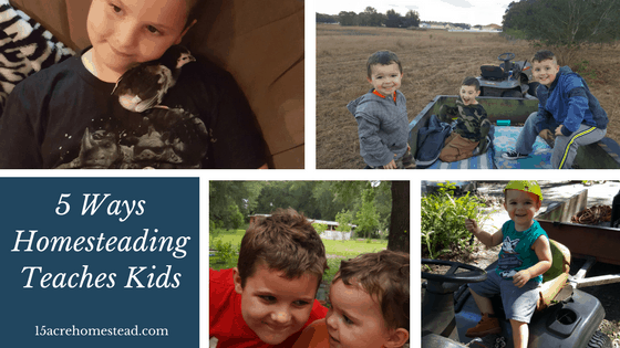5 Ways Homesteading Teaches Kids