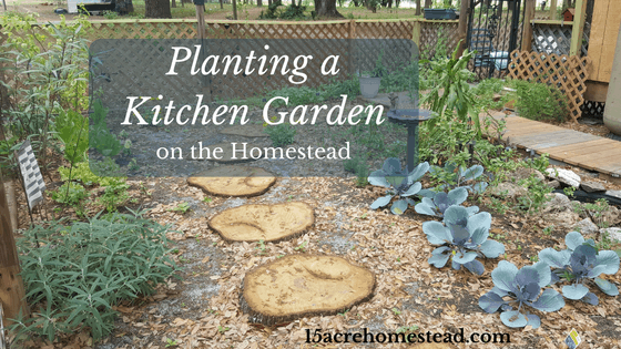 Planting a Kitchen Garden on the Homestead
