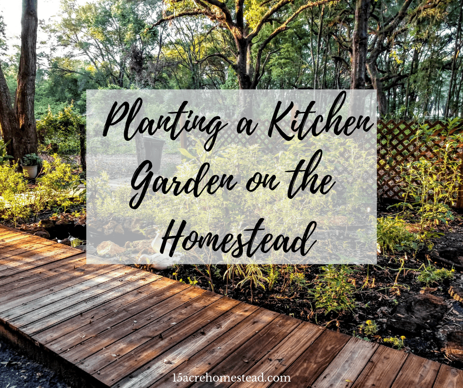 Homestead Gardens Landscaping: Planting A Kitchen Garden On The Homestead