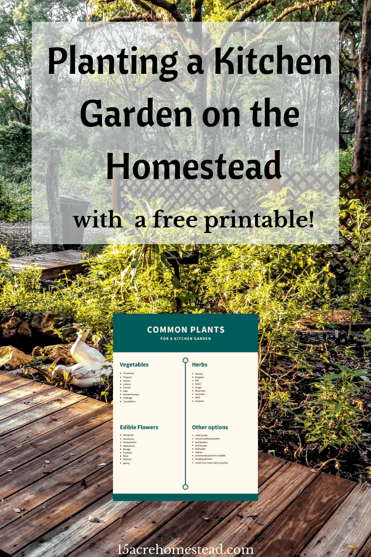 Planting a kitchen garden on the homestead is a great way to provide all the fresh veggies and herbs you need each day in your cooking!