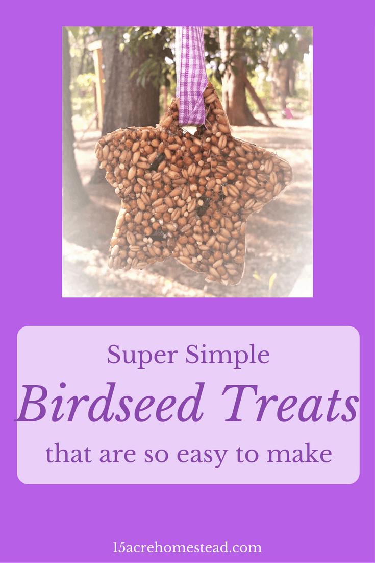 Birdseed treats