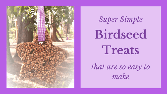 Birdseed Treats That Are So Simple To Make