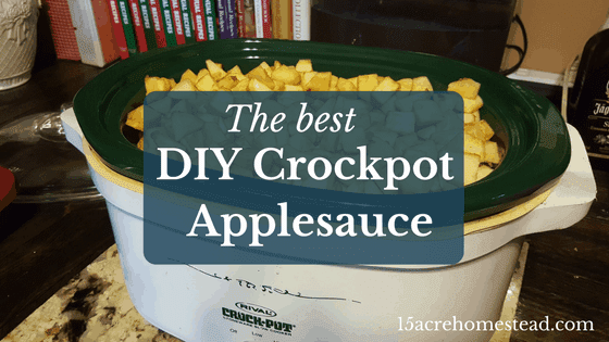 The Best Ever DIY Crockpot Applesauce