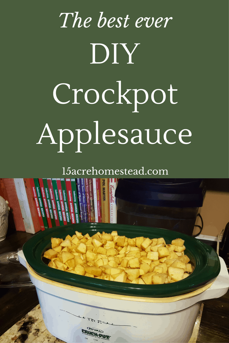 The best ever DIY Crockpot Applesauce Recipe ever!