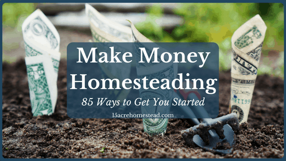 Make Money Homesteading: 85 Ways to Get You Started