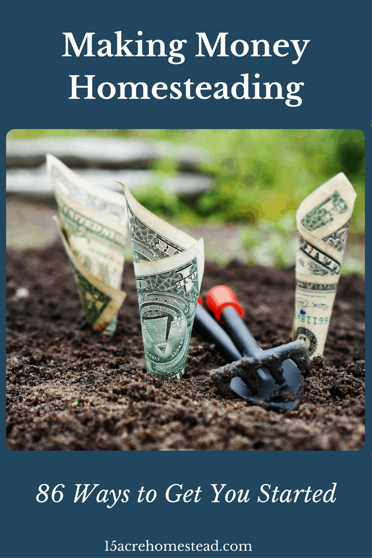 Making money while homesteading is easy and fun.