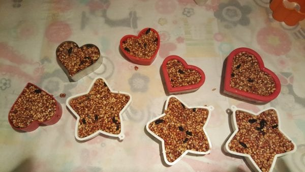 birdseed treats pressed into cookie cutters