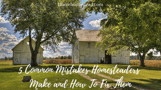 mistakes homesteaders make