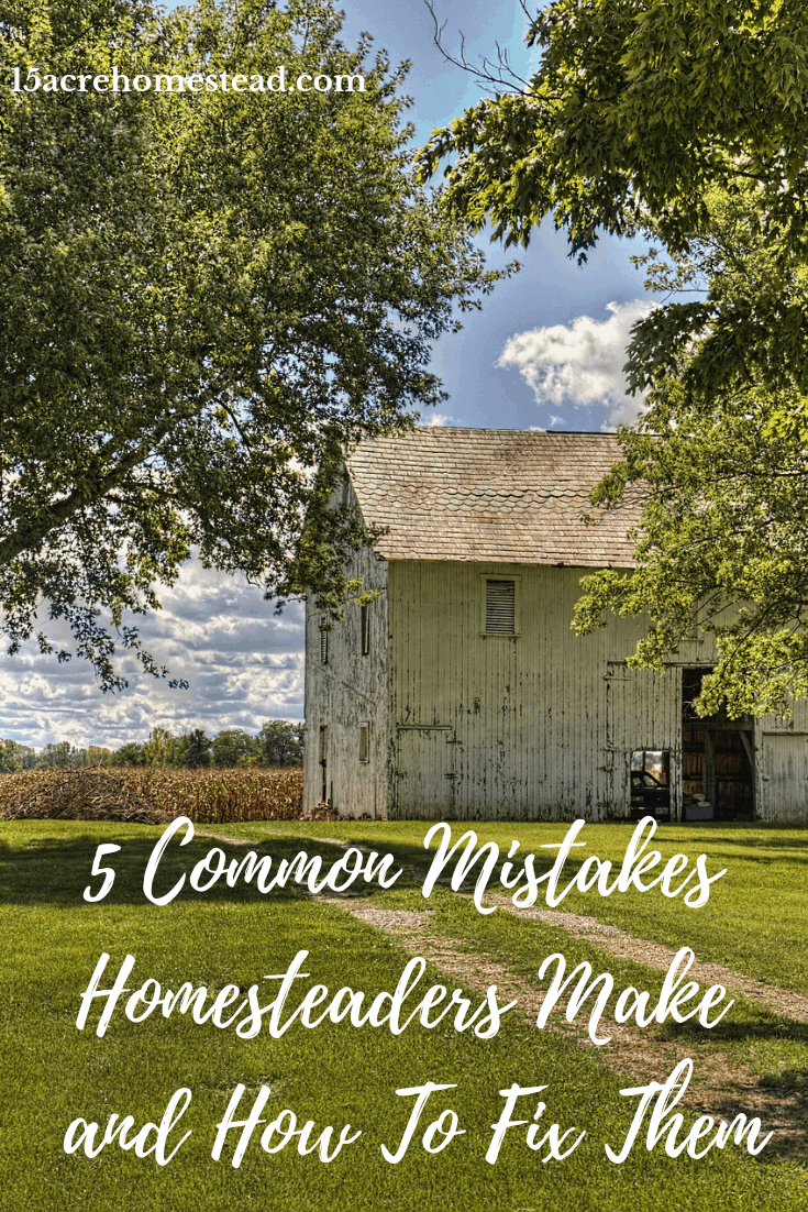 New homesteaders always make mistakes. The problem is most of them can be avoided. Read about 5 common mistakes homesteaders make and ways you can avoid them.