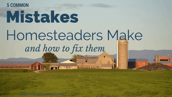 5 Common Mistakes Homesteaders Make and How to Fix Them