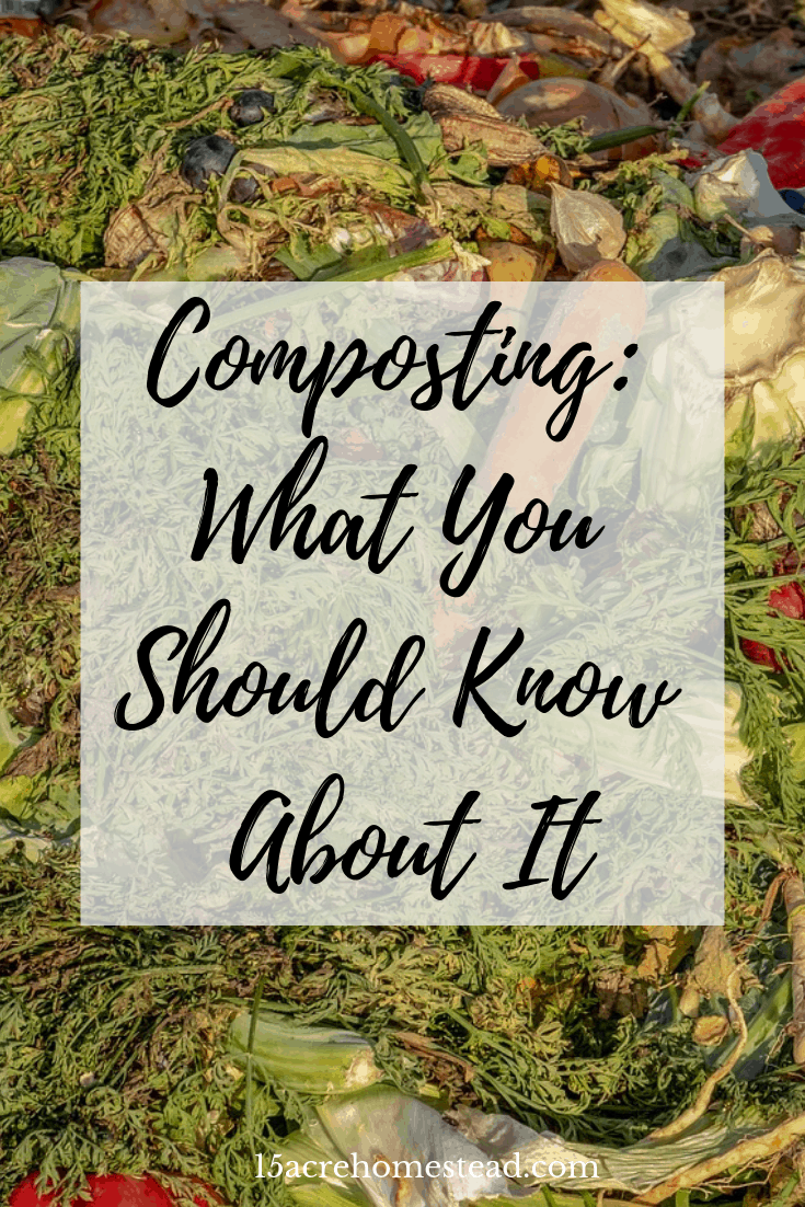 Do you use a compost pile or bin on your homestead? If you haven't started composting yet, now is the time. Learn all that you need to know to be successful right here.