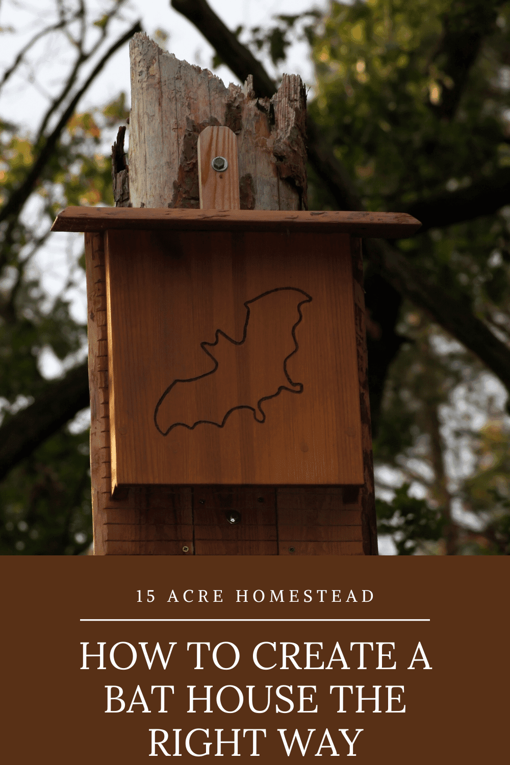 Having a bat house on your property can be very beneficial to your homestead. Especially if you are trying to control the mosquitoes! Learn how to make a bat house correctly.