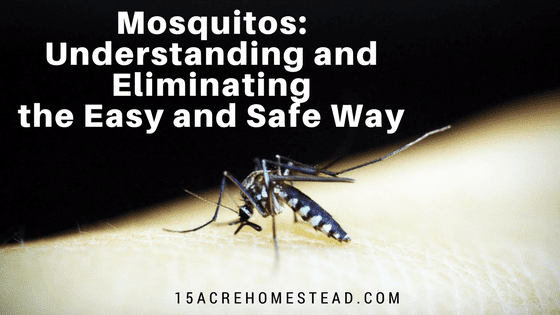Mosquitos: Understanding and Elimination the Easy and Safe Way