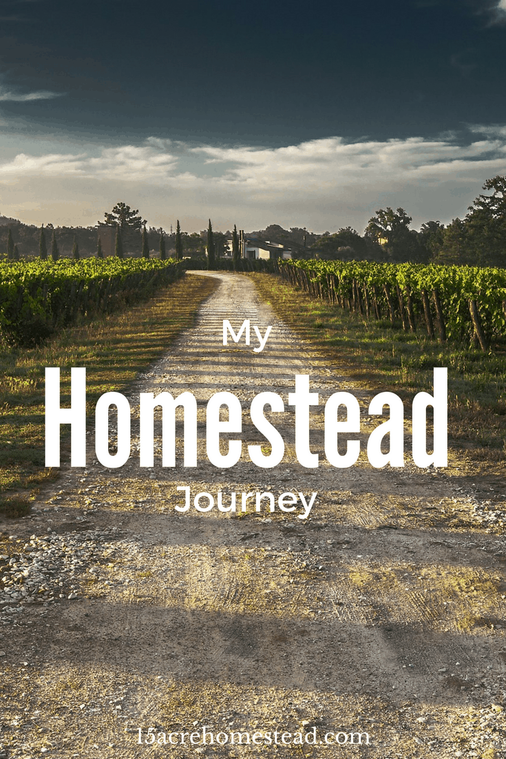 My personal homesteading journey.