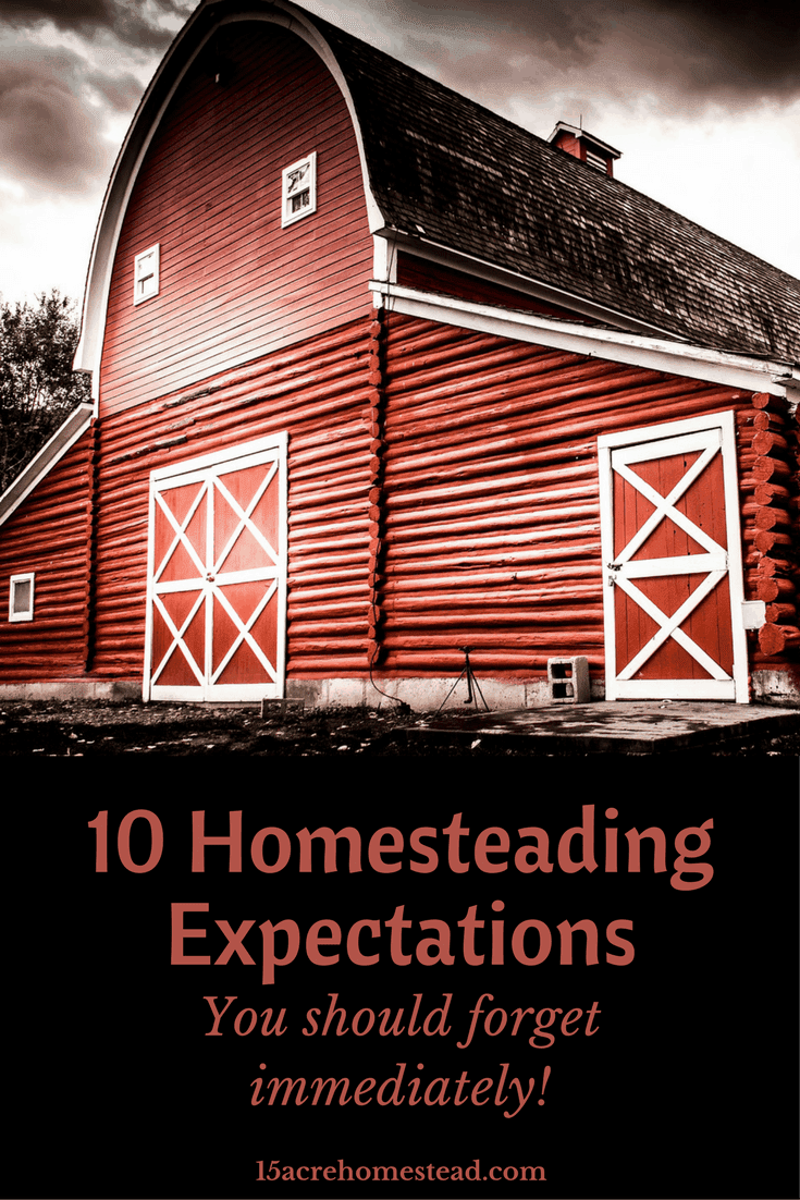 You should forget these expectations when homesteading.