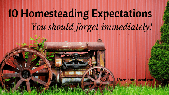 homesteading-expectations