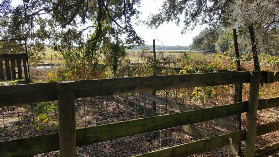 homestead fence