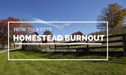 How to Avoid Homestead Burnout