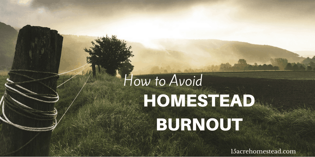 how to avoid job burnout