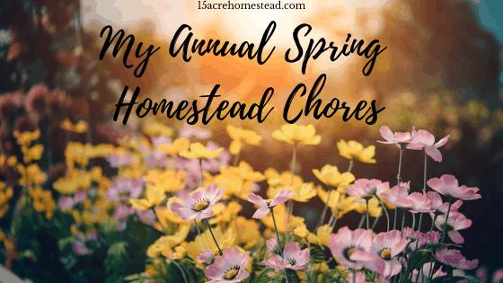 annual spring homestead chores