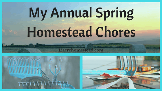 My Annual Spring Homestead Chores