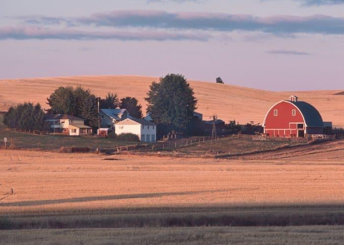 Homestead burnout- dream farm
