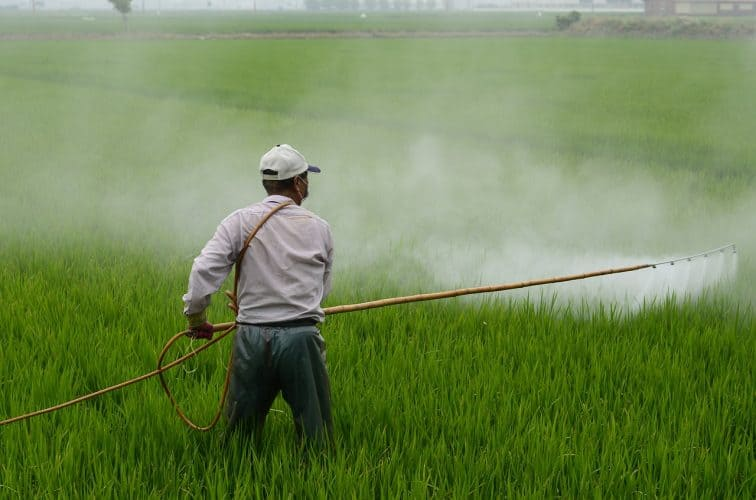 commercially grown food sprayed with pesticide