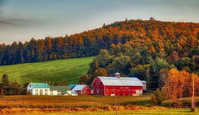 homestead burnout: stereotypical farm image