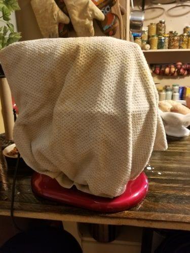 Towel covering homemade butter ingredients