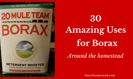30 Amazing Borax Uses Around the Homestead