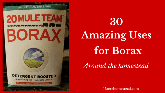 30 borax uses