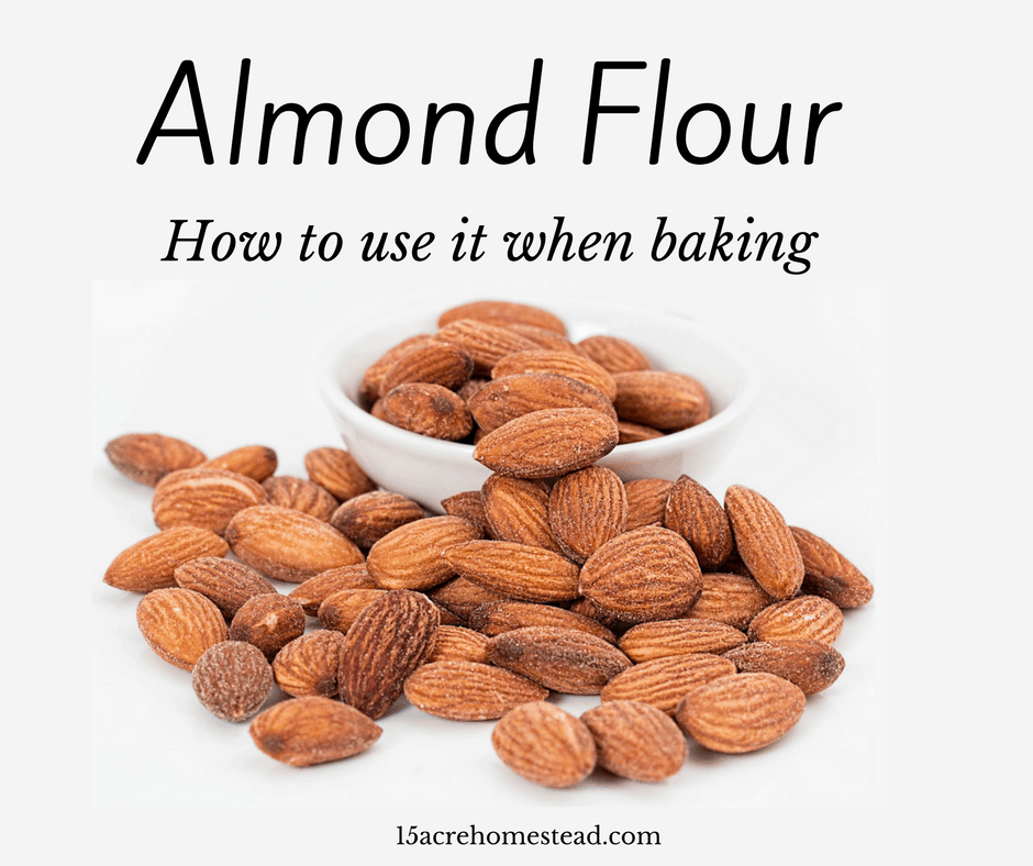 Can Dogs Eat Almond Flour
