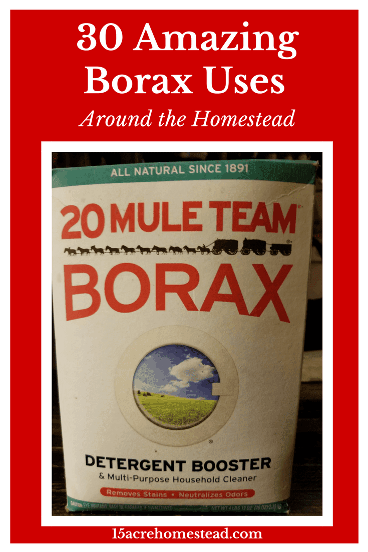 Borax is so versatile for the homestead. There are so many Borax uses you may not know about.