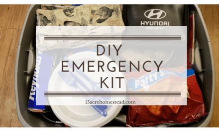 My DIY Emergency Kit: What's In It