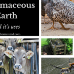 Diatomaceous Earth and Its Uses.