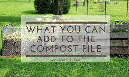 What Can You Add to the Compost Pile
