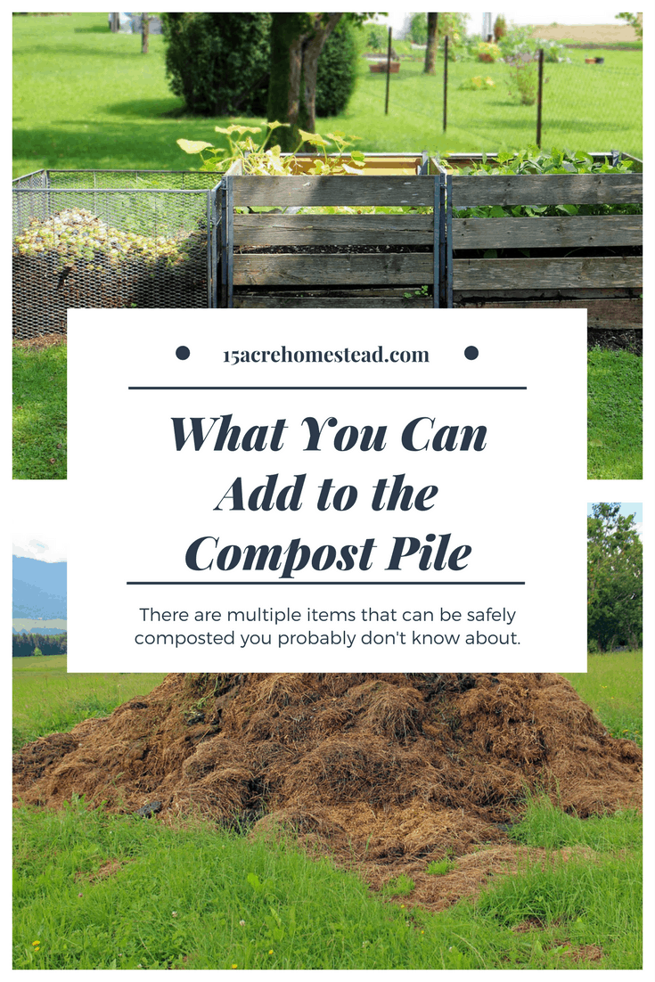 What you can add to the compost pile