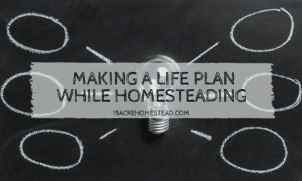 Making a Life Plan While Homesteading