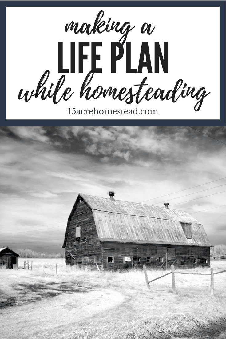 Making a life plan while homesteading can ensure your homesteading plan ties into your overall plan in life.