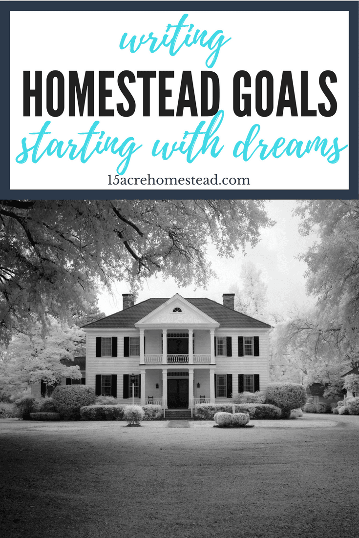 Writing homestead goals starts with dreams and ends with a solid action plan.